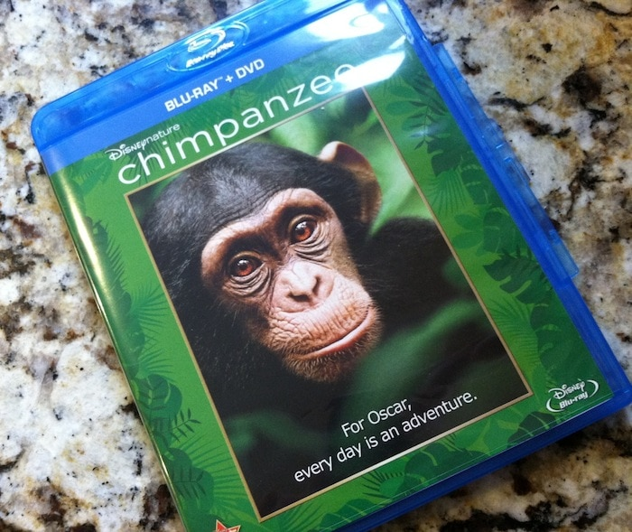 Disneynature's Chimpanzee: I Dare You Not To Fall In Love With Oscar