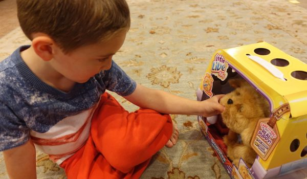 caleb-puppy-toy-review-10-16-pic-4
