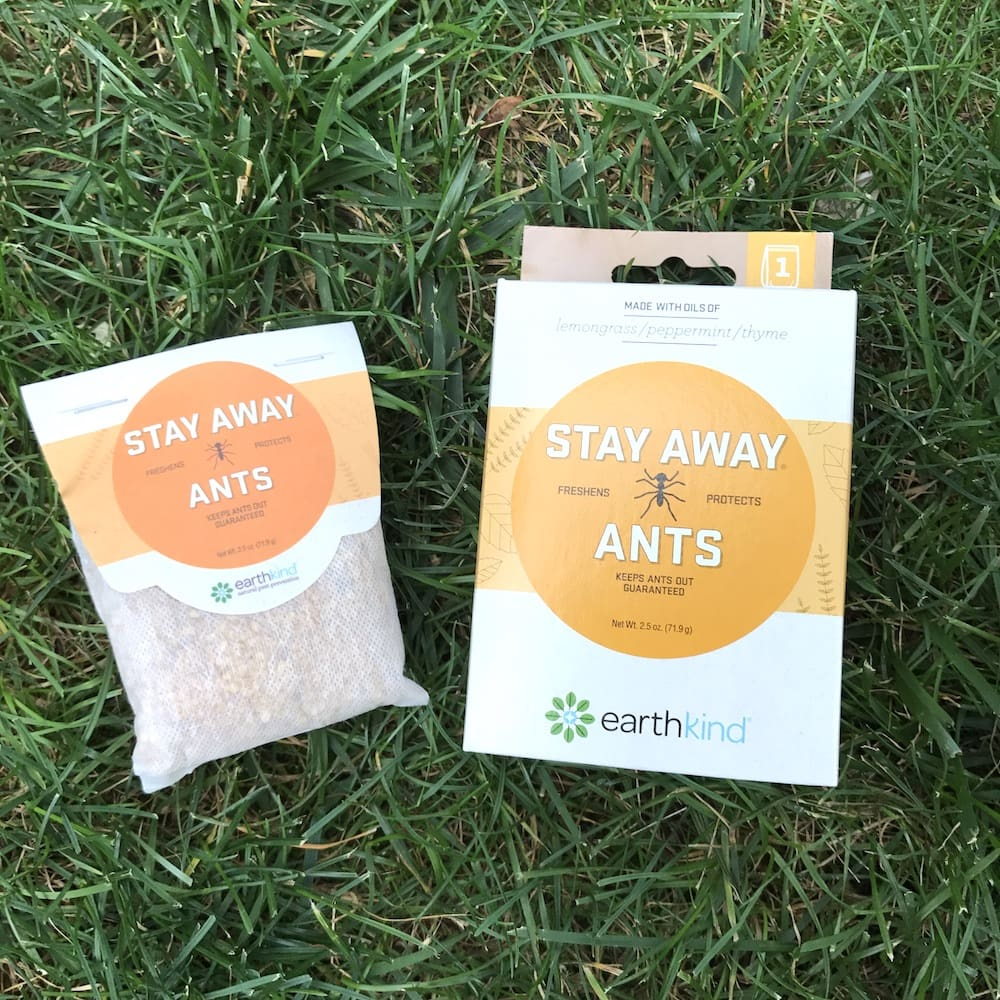 Easy tips to keep the ants away this summer lady and the blog - Keep ants away in simple ways ...