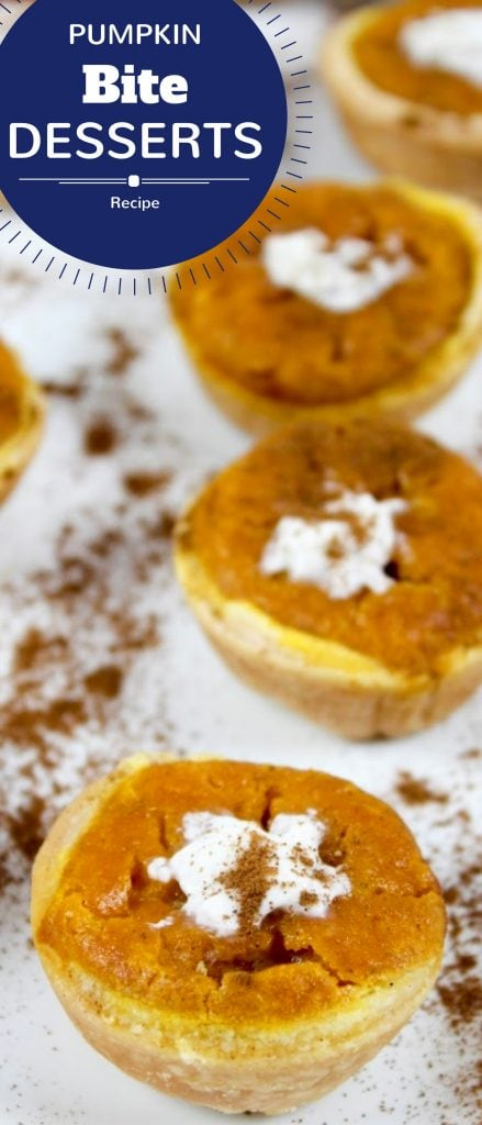 pumpkin bite recipe